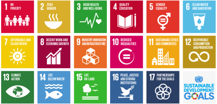 A Look Into the SDG Logo Design Process with Natabara Rollosson – MUN Impact